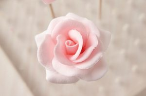 роза из мастики-шаг 9